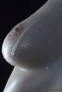 Medium Tit