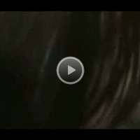 Juancoo350's  Oral Sex  Video