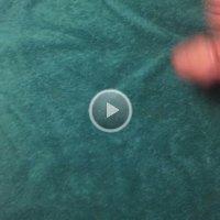 Vivvie Video