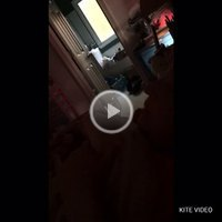 Bm2020's  Voyeur Bm  Video
