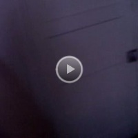 Ass Video