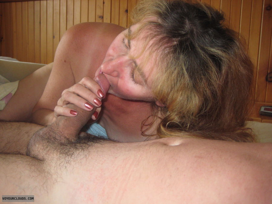 blowjob, bj, cock suck, oral sex, hard cock