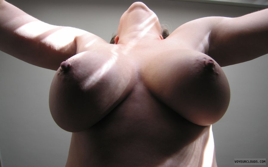 topless, big boobs, big tits, hard Nipples, braless