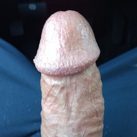 Hornycock